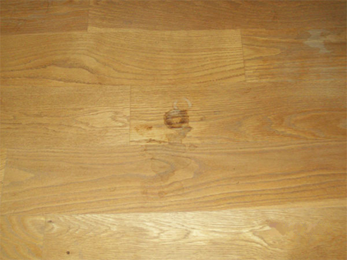Plymouth Wood Flooring Speialist